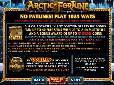 Scatter и Wild в автомате Arctic Fortune